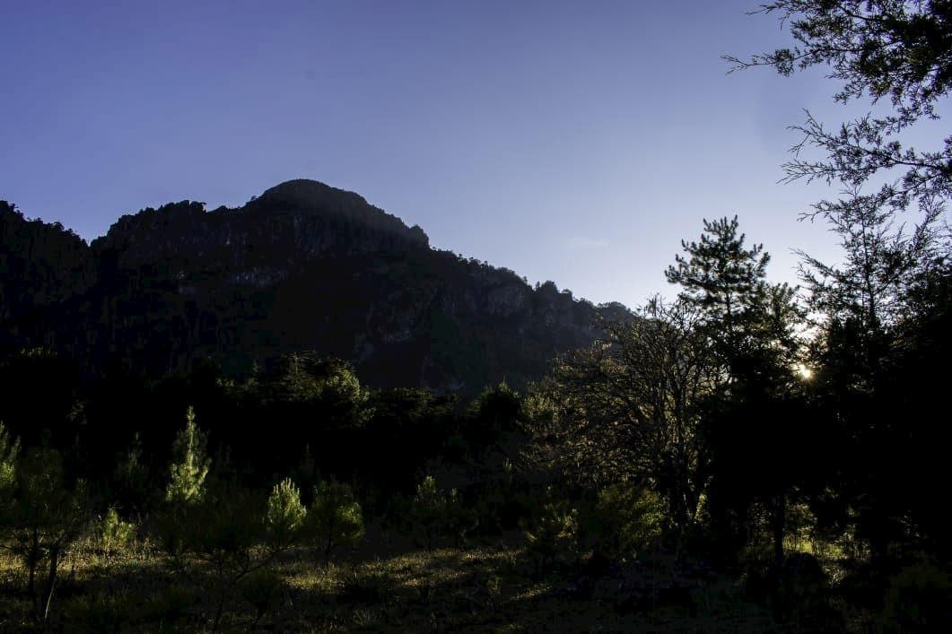 Llano de la garza clima la trinidad xilitla
