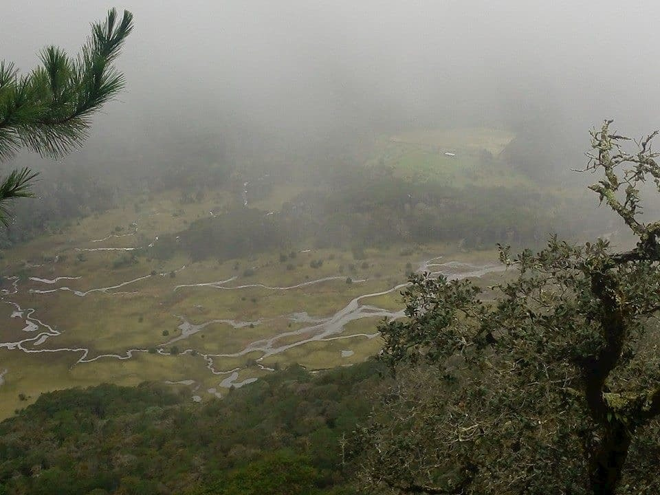Llano de la garza la trinidad xilitla slp