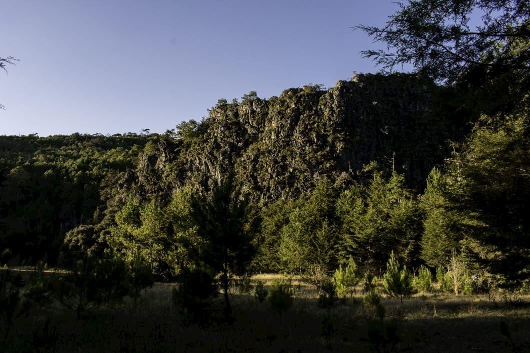 Llano de la garza la trinidad xilitla