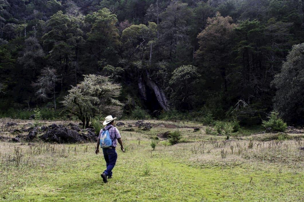 Llano del conejo la trinidad xilitla slp